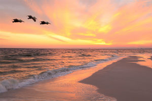 Cape San Blas Sunset